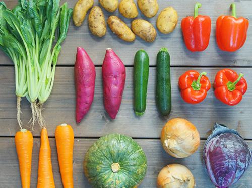 お野菜たっぷり画像